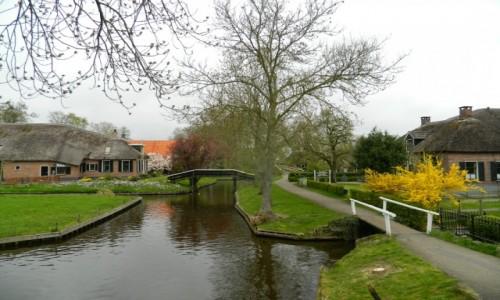 Zdjęcie HOLANDIA / gierthoorn / .. / Giethoorn wenecja północy...