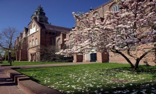 Zdjecie HOLANDIA / Groningen / Stare Miasto / Kościół św. Marcina