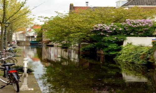 Zdjęcie HOLANDIA / zachód / Delft / Jeden z kanałów
