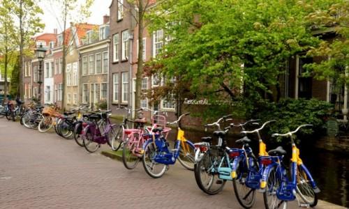 Zdjęcie HOLANDIA / zachód / Delft / Rowery są w Holandii wszędzie :-)