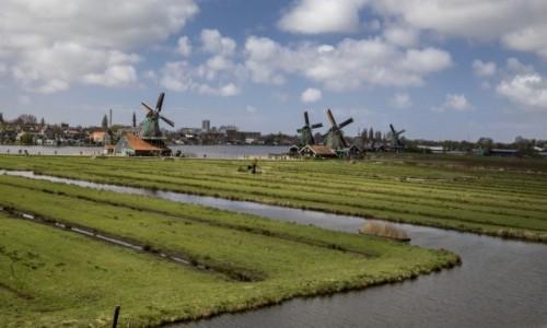 Zdjęcie HOLANDIA / Holandia Północna / Zaandam / Zaanse Schans