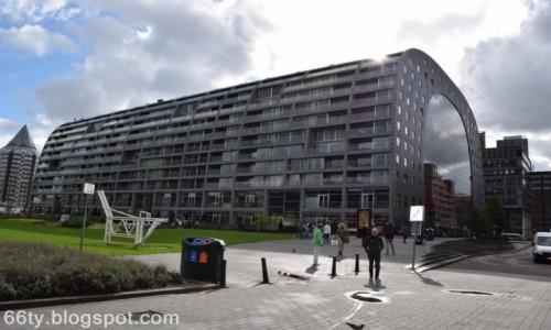 Zdjecie HOLANDIA / - / Rotterdam / Market Hall