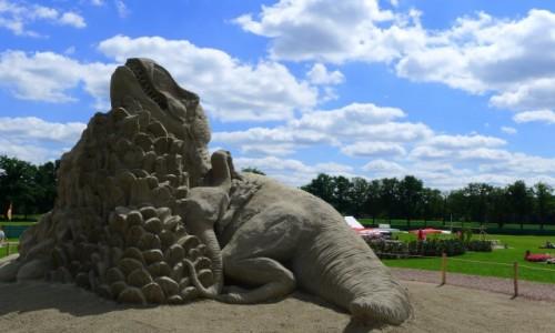 Zdjęcie HOLANDIA / Achterhoek/ Wschodnia  Holandia / Winterswijk / Piaskowy dinozaur