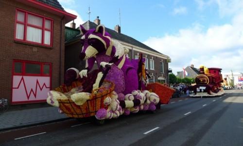 HOLANDIA / Achterhoek/ Wschodnia  Holandia / Winterswijk / Bloemencorso