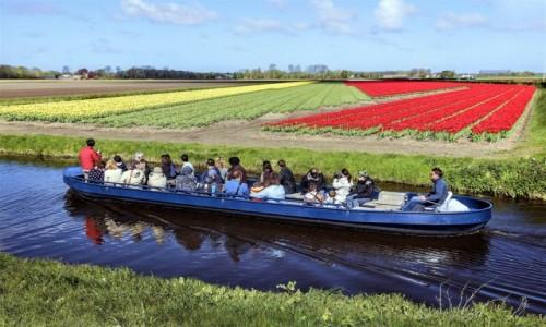 HOLANDIA / Amsterdam / Ogrody Keukenhof  / Z łodzi widać więcej