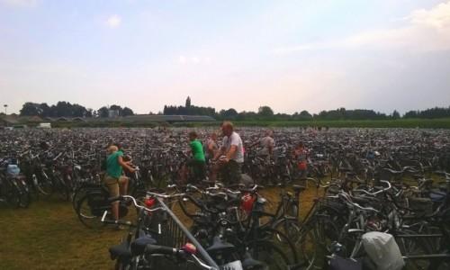 Zdjecie HOLANDIA / Wschodnia Holandia/ Achterhoek / Miejscowość Lichtenvoorde/ parking dla rowerów / Igła w stogu siana