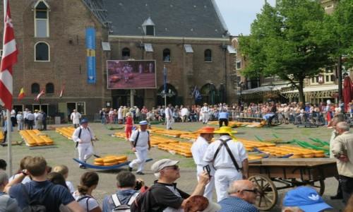 Zdjecie HOLANDIA / Alkmaar / Alkmaar / Targ serów