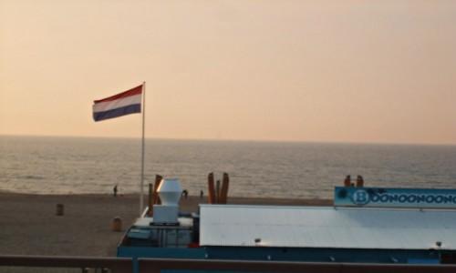 Zdjecie HOLANDIA / Den Haag / Scheveningen / Scheveningen Beach