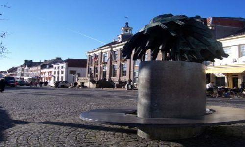 Zdjęcie HOLANDIA / Geldria / Zaltbommel / Rynek Zaltbommel