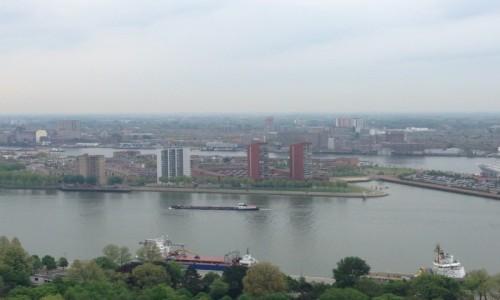 Zdjecie HOLANDIA / Randstad Holland / Rotterdam / Rotterdam