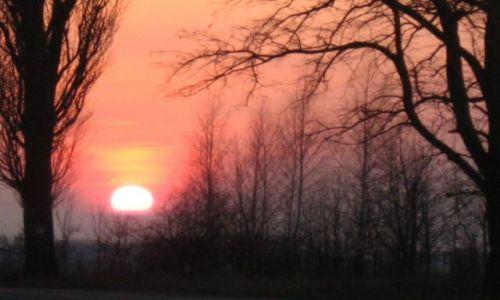 Zdjecie HOLANDIA / brak / oss / the sunset 2