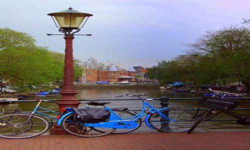 Zdjecie HOLANDIA / pln-wsch / Amsterdam / są wszędzie