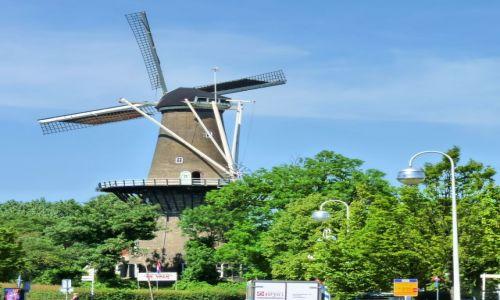 Zdjecie HOLANDIA / Zuid Holland / Leiden / Samotny wiatrak