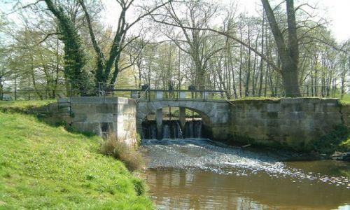 Zdjecie HOLANDIA / Limburg / Sittard / Park w Sittard,(sluzy).