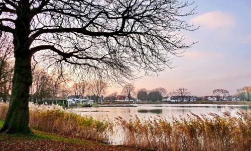Zdjęcie HOLANDIA / Overijssel / Hengelo / Miejski staw