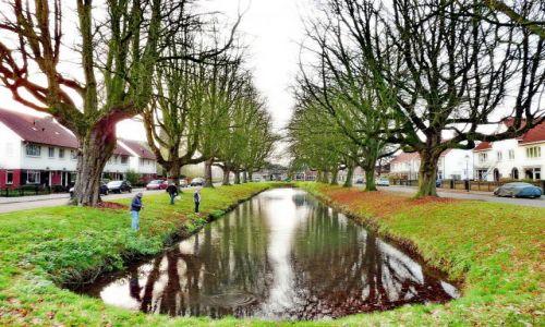 Zdjęcie HOLANDIA / Overijssel / Hengelo / Wielki połów