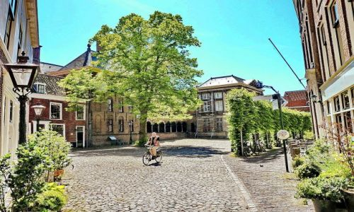 Zdjecie HOLANDIA / Zuid Holland / Leiden / Jadąc przez skwer