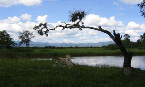 Zdjęcie HONDURAS / Ameryka / Tegucigalpa / nice.............