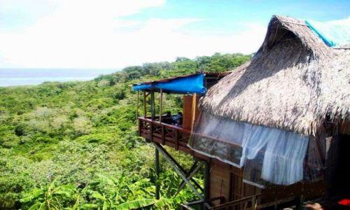 Zdjęcie HONDURAS / Roatan / Roatan / Chatka w dżungli