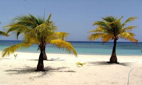 Zdjęcie HONDURAS / Roatan / West Bay / karaiby...
