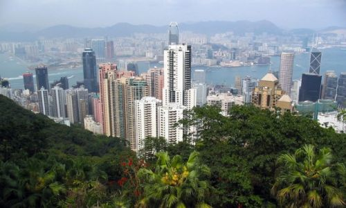 HONG KONG /   /   / Roslinność w Hong Kongu walczy o przetrwanie