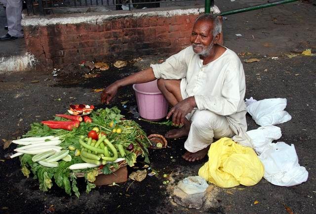 Zdj�cia: Okolice Varanasi, Warzywniak inaczej ..., INDIE