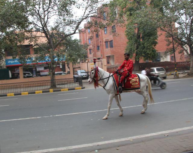 Zdjęcia: Old Delhi, Delhi, jeżdziec, INDIE