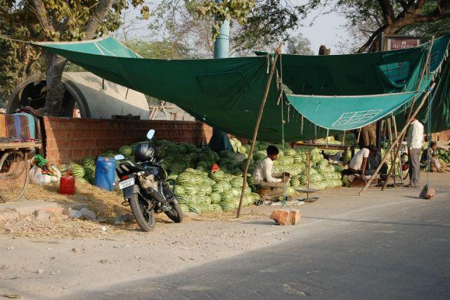 Zdjęcia: Agra, Uttar Pradesh, Zapraszam na arbuza , INDIE