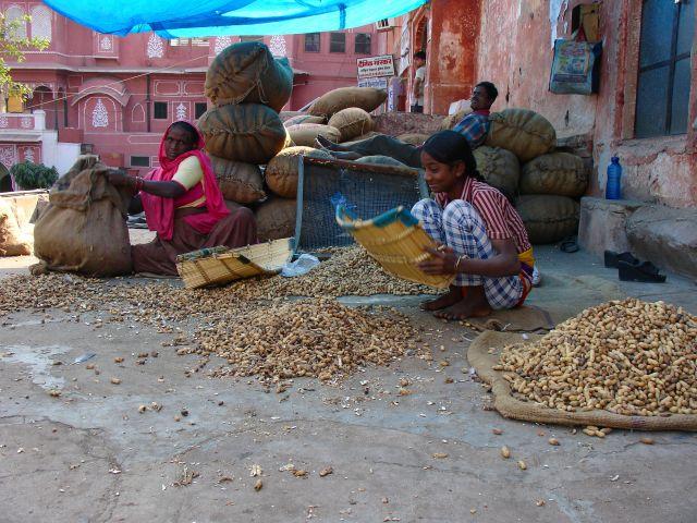 Zdjęcia: JAIPUR, RAJASTHAN, RODZINNY INTERES, INDIE