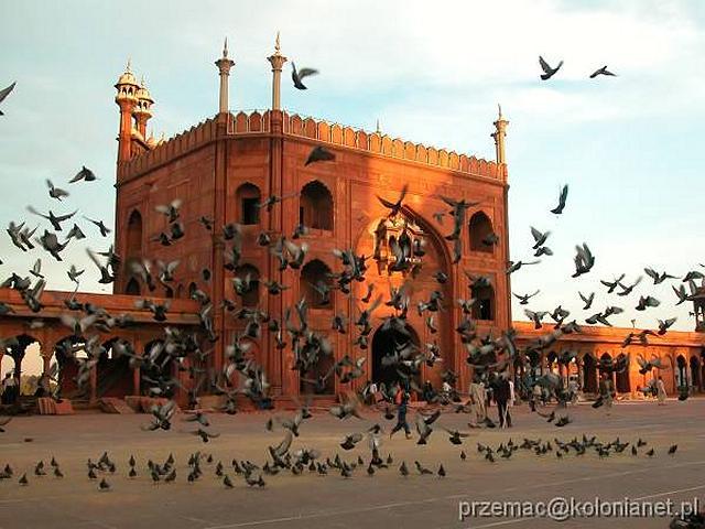 Zdjęcia: Delhi, Brama na dziedziniec meczetu Jama Masjid, INDIE