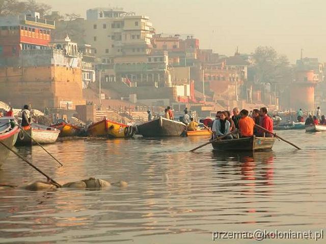 Zdjęcia: Varanasi, Zwłoki pływające w Gangesie, INDIE