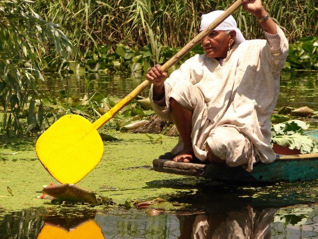 Zdjęcia: Jezioro Dal , Sikkara, Kashmir - Srinagar, transport na jeziorze Dal , INDIE