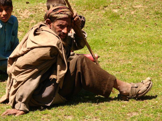 Zdjęcia: Sonamarg, Kashmir - , Pasterz, INDIE
