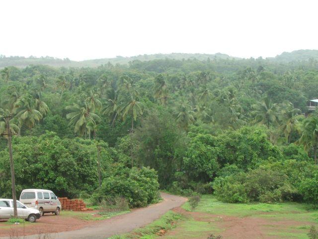 Zdjęcia: Anjuna, Goa, Goa to nie tylko plaże, INDIE