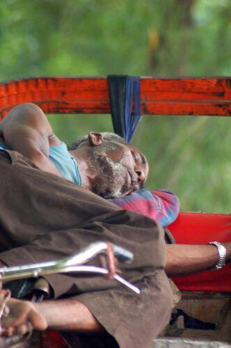 Zdjęcia: Delhi, Kolory Indii - odpoczynek , INDIE