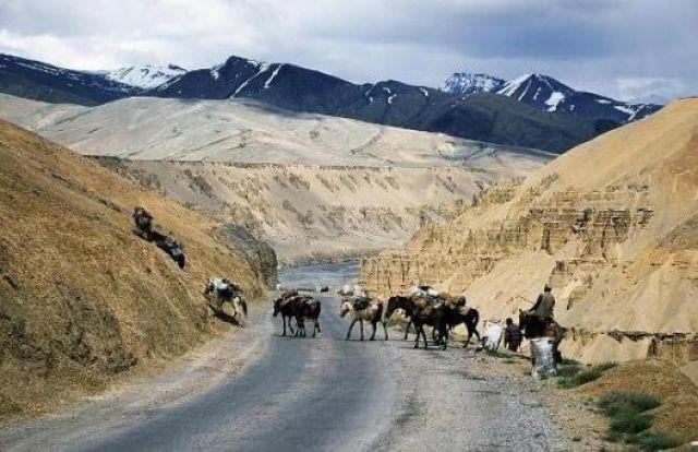 Zdjęcia: Na południe od Leh, Ladakh , Kampowie , INDIE