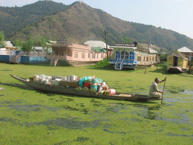 Zdjęcia: Srinagar, Kaszmir, sprzedawca miednicna jeziorze Dal, INDIE