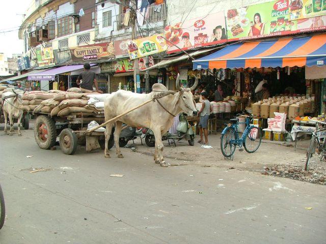 Zdjęcia: Delhi, market na Paharganj, INDIE