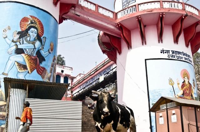 Zdjęcia: Varanasi,  Uttar Pradesh, święta trójca , INDIE