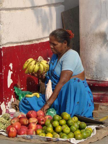 Zdj�cia: Delhi, straganik, INDIE