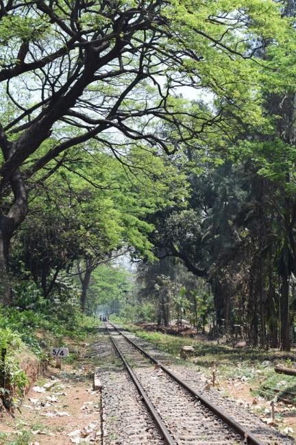 Zdjęcia: Ooty, Tamilnadu, tory, INDIE