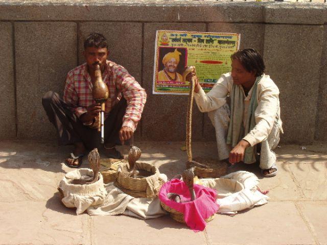 Zdjęcia: Delhi, Kobry z zaklinaczami, INDIE