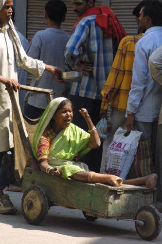 Zdjęcia: Waranasi, Uttar Pradesh, Zebraczka, INDIE