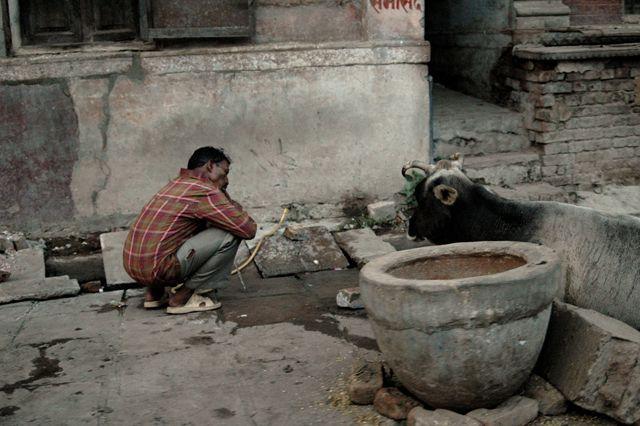 Zdj�cia: Varanasi, Varanasi, INDIE