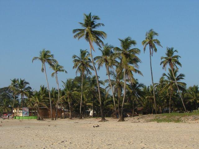 Zdjęcia: Goa, Plaża GOA, INDIE