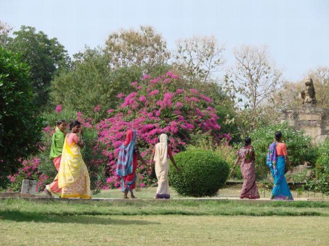 Zdjęcia: madhya pradesh, walking beauties, INDIE
