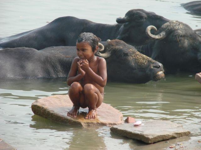 Zdjęcia: benares, uttar pradesh, ganga, INDIE