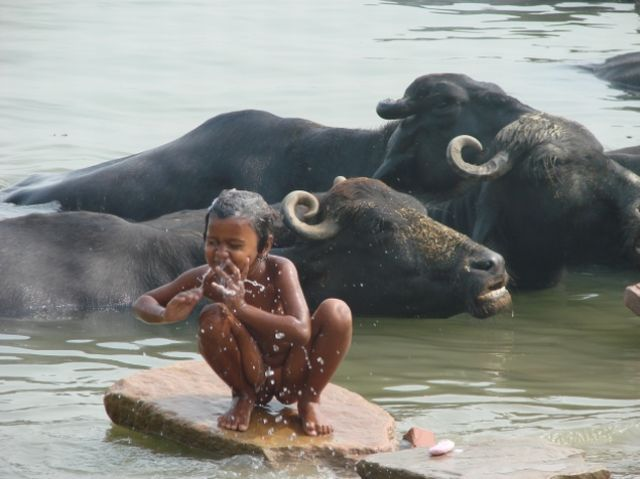 Zdjęcia: varanasi, uttar pradesh, BENARES widziany MOIMI oczami, INDIE