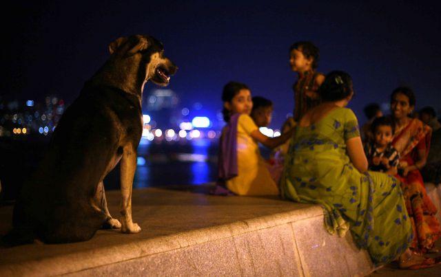 Zdjęcia: BOMBAY, BOMBAY, INDIE