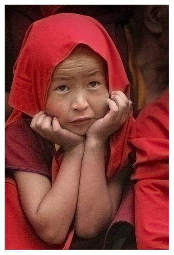 Zdjęcia: Hemis, Ladakh, Mniszek, INDIE